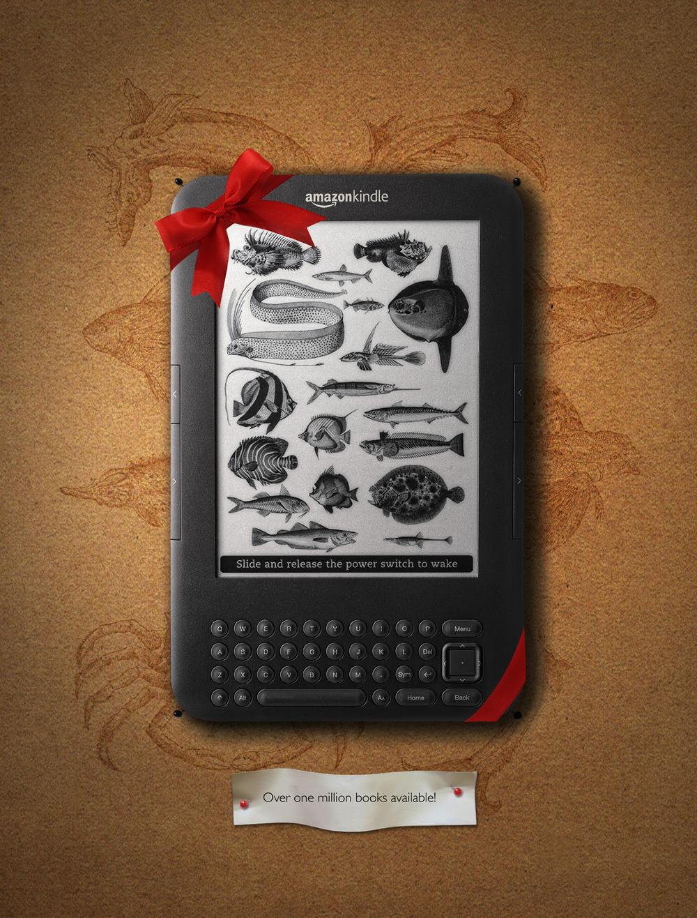 KindleDiagramsmall.jpg