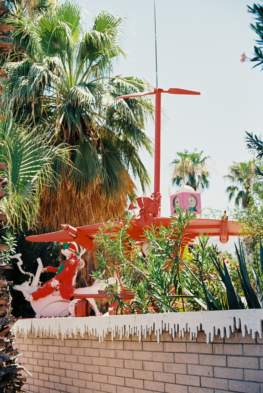Palm Springs Joshua Tree Travel Film - Diana Ascarrunz Photography-53.jpg