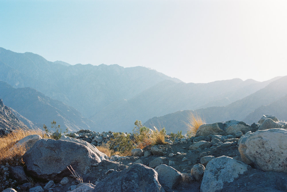 Palm Springs Joshua Tree Travel Film - Diana Ascarrunz Photography-37.jpg