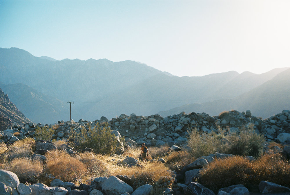 Palm Springs Joshua Tree Travel Film - Diana Ascarrunz Photography-45.jpg