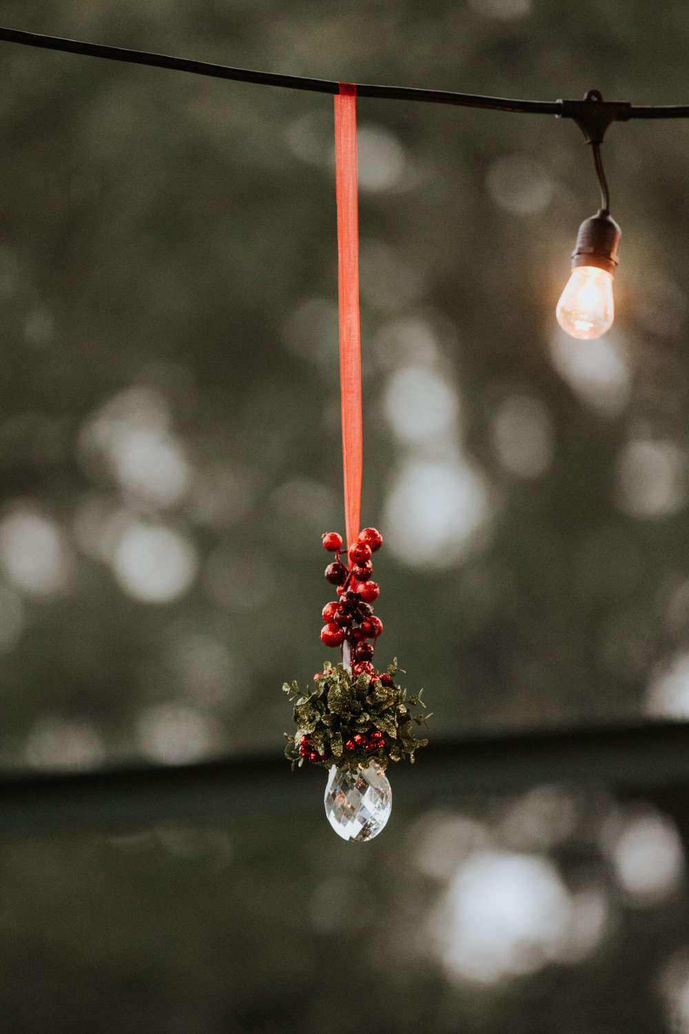 Christmas wedding Mistletoe
