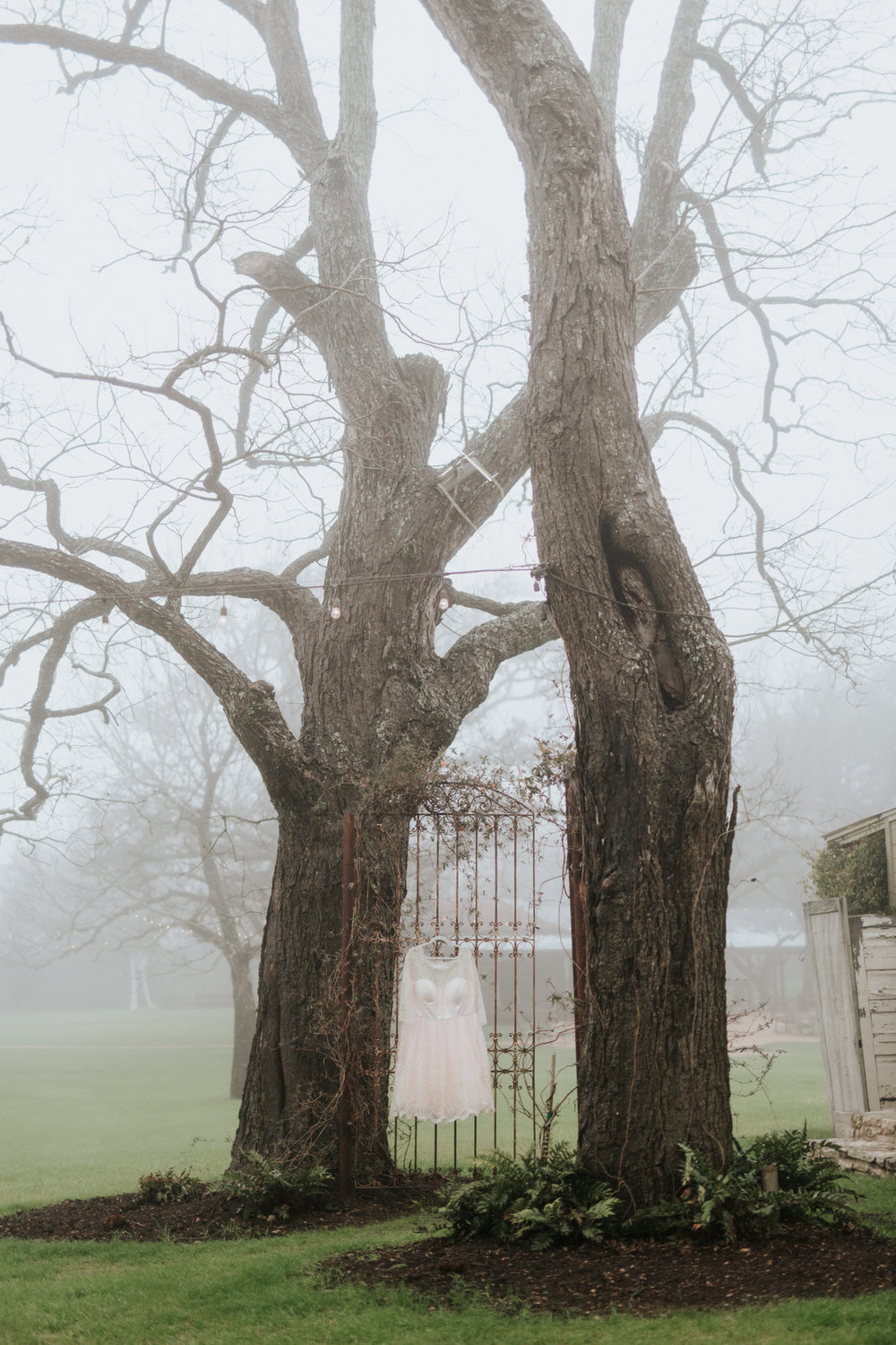 Foggy day wedding at Pecan Springs Ranch