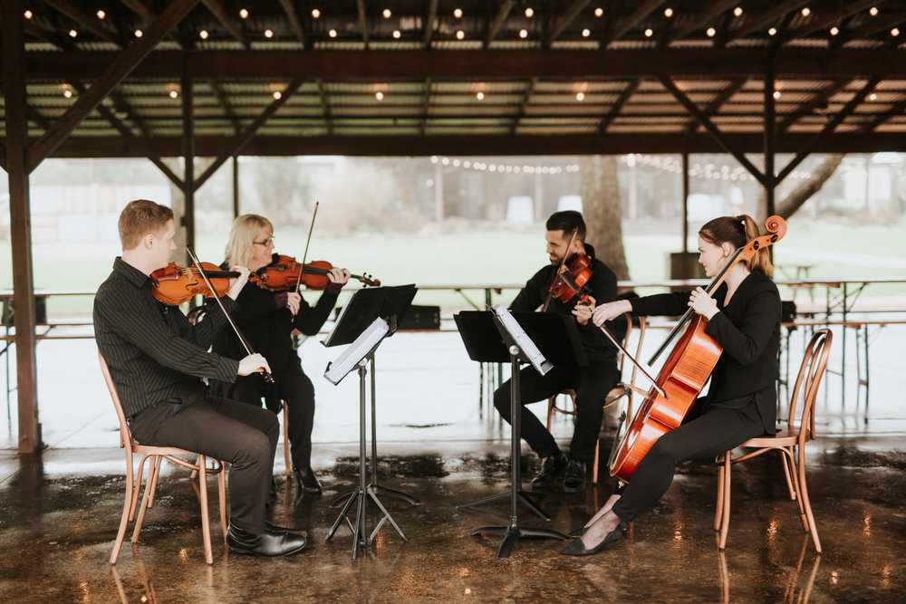 Terra Vista musicians playing at wedding