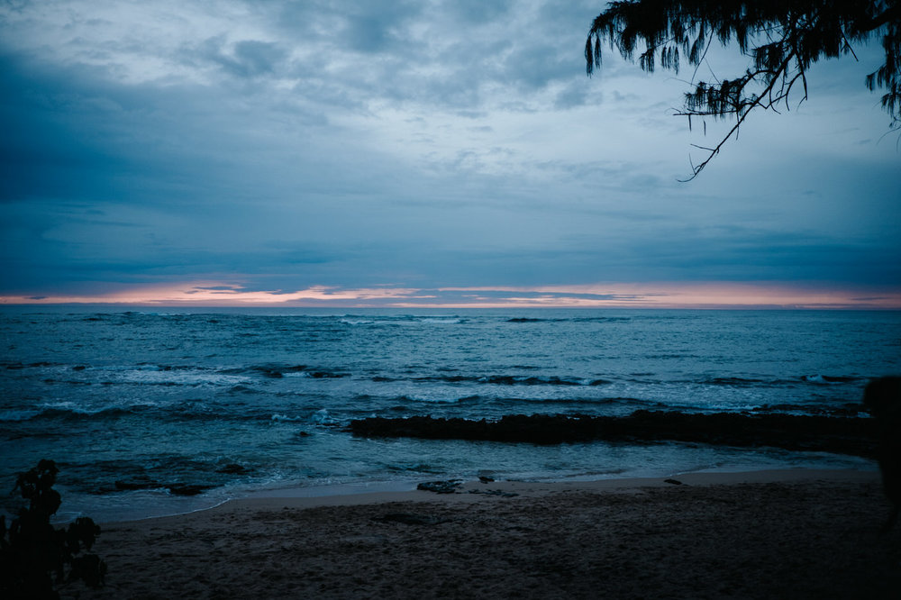 Nature photography in Hawaii
