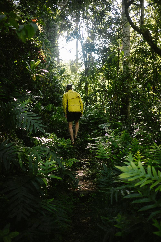 Hawaii nature photography