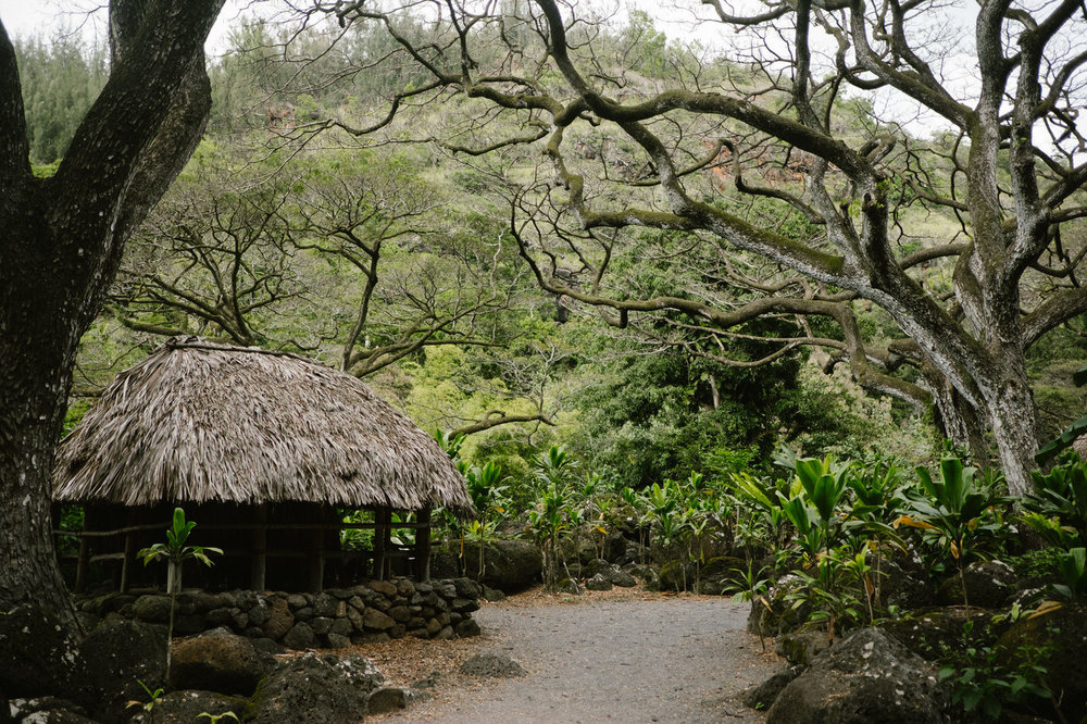 Beach hut in Hawaii