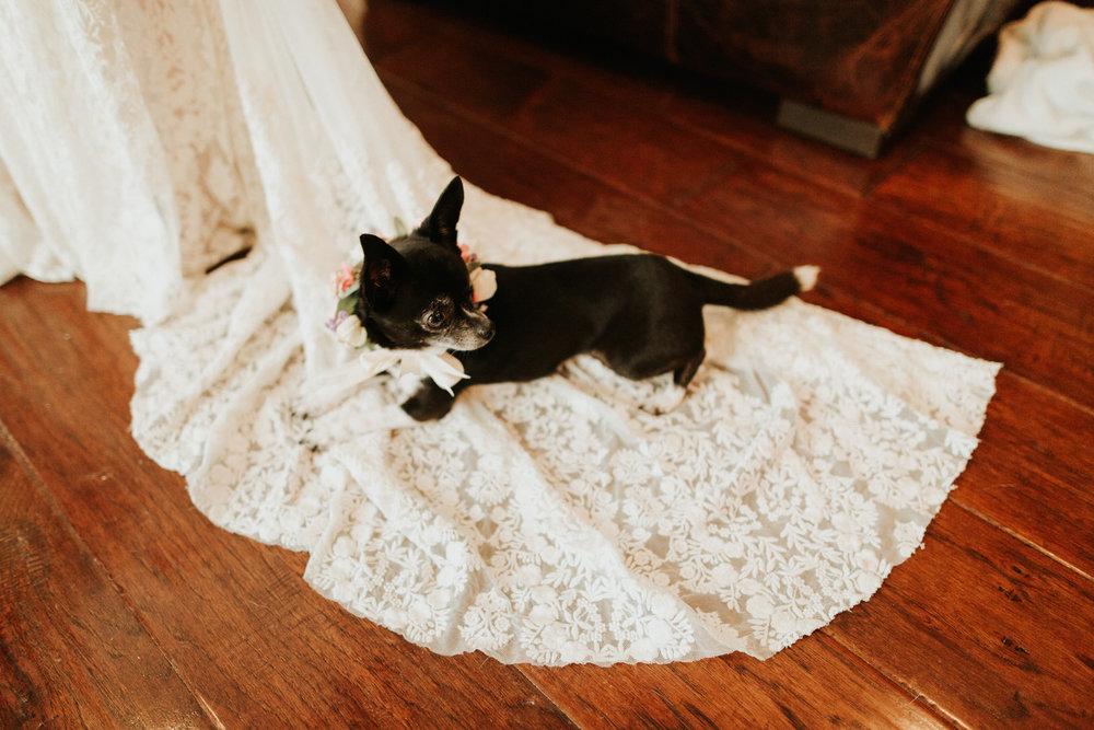 Lexi + Travis Wedding - Diana Ascarrunz Photography-396.jpg