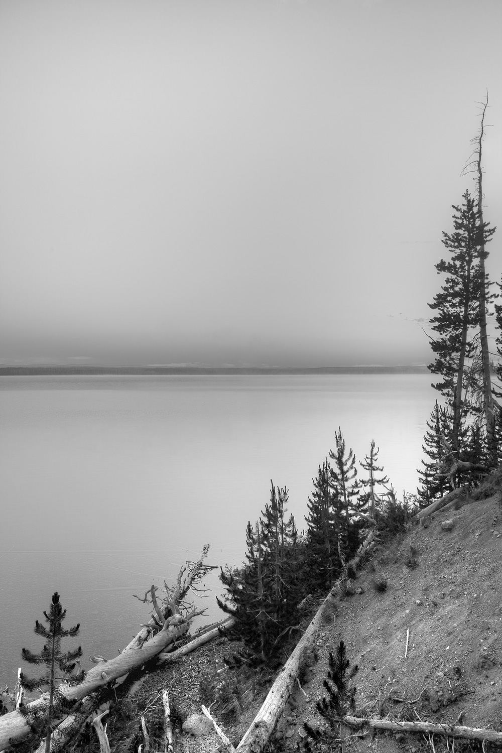 YSNP-Landscapes-BW-MG1149.jpg