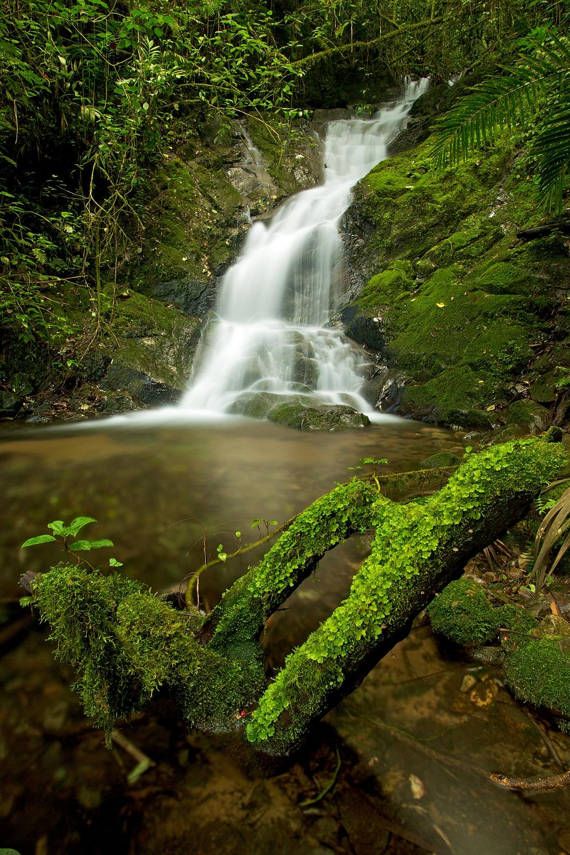 Waterfall_93A8217.jpg