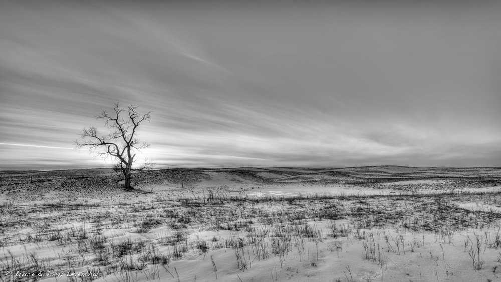 -26 ℉ on a -  5℉ Day - Manning Trail, MN    NIkon D800E + Nikon 17-35mm f2.8 AFS