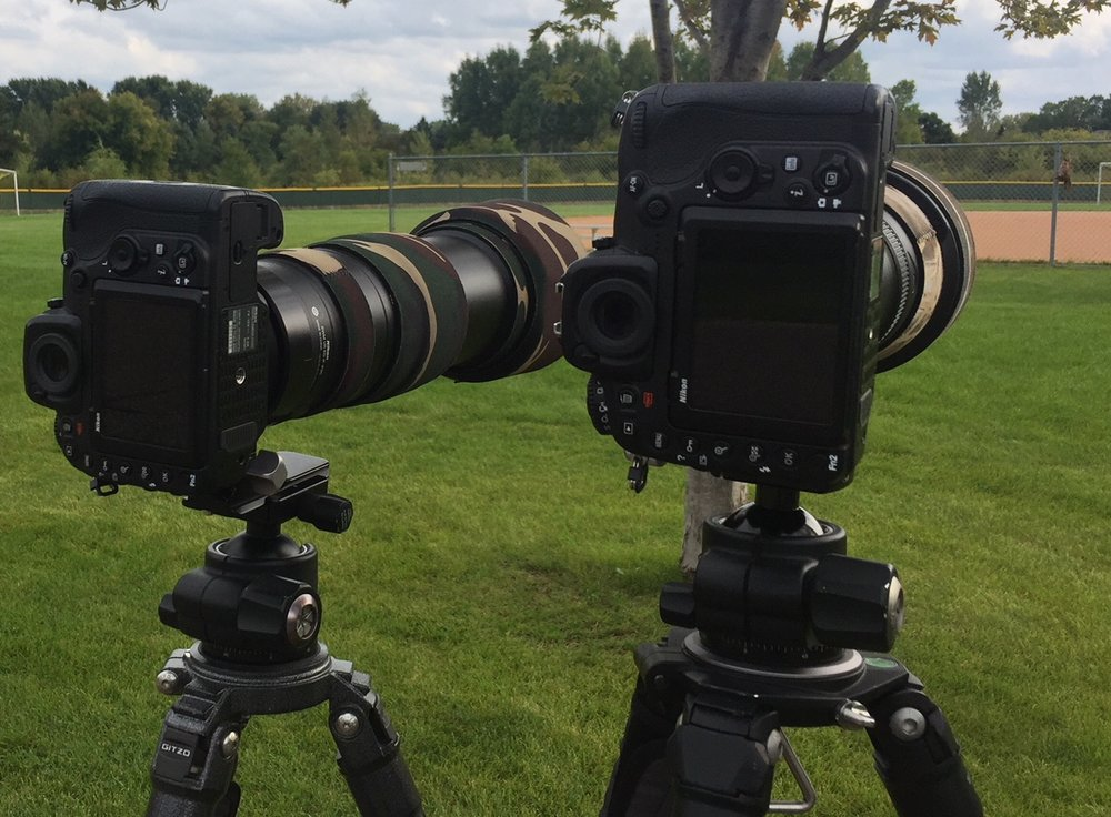 D500 + 200-500VR on the left, D500 + 500mm PF on the right,… owl mount is just visible in the right corner (image taken with an iPhone 6)