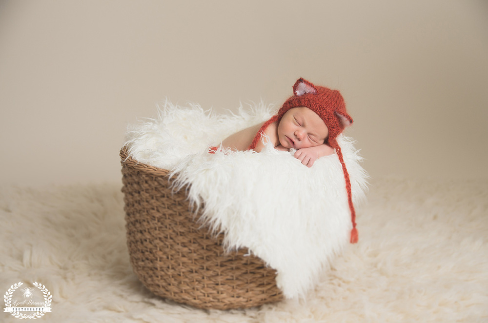 newborn-photography-gardencity-ks-32.jpg