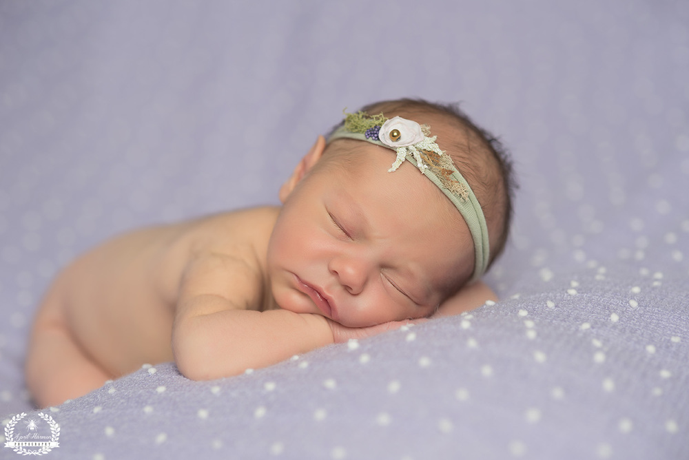 newborn-photography-gardencity-ks-15.jpg