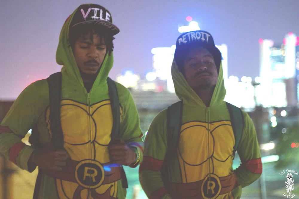 TurtleRoof1.jpg
