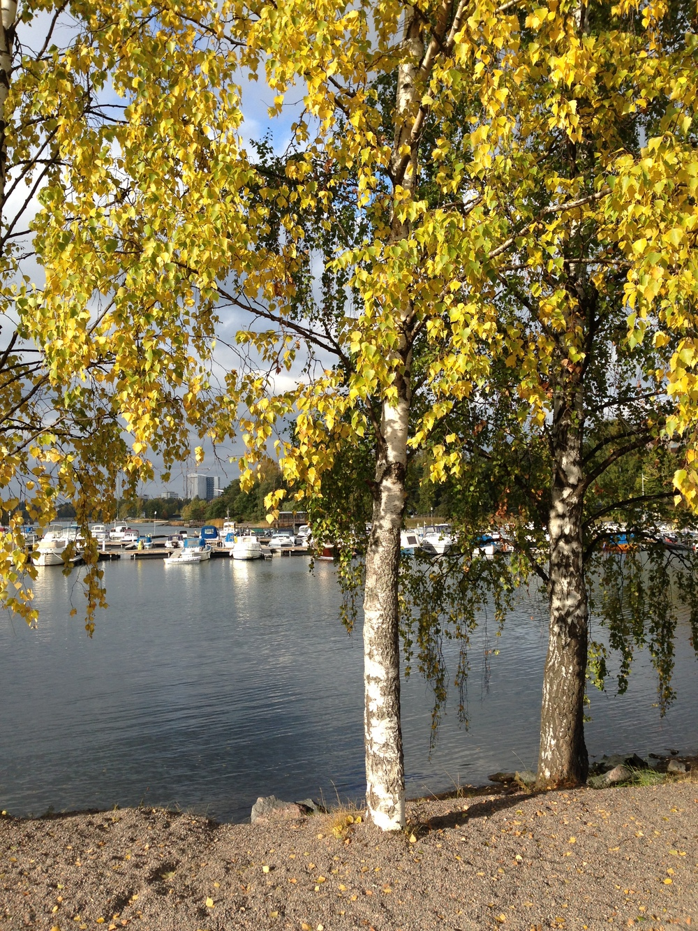 Fall colors, Helsinki