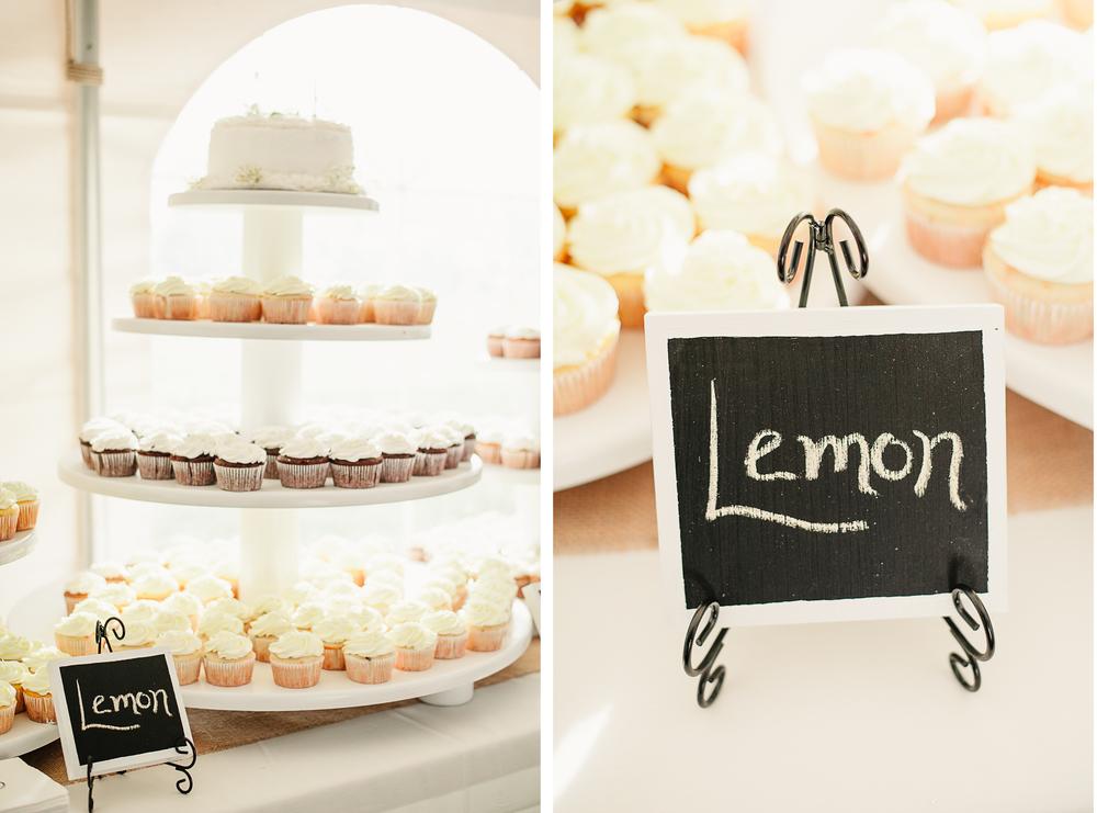 Albany NY Farm Wedding Cupcake Tower