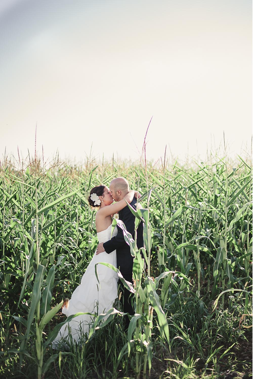 Albany NY Farm Wedding Corn Fields