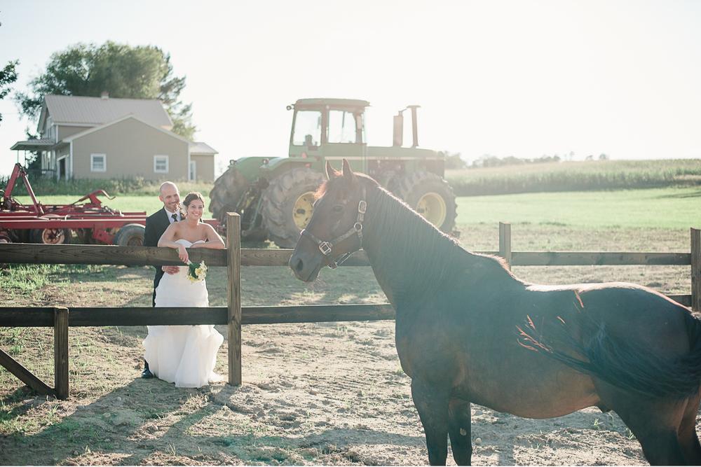 Albany NY Farm Wedding Horse