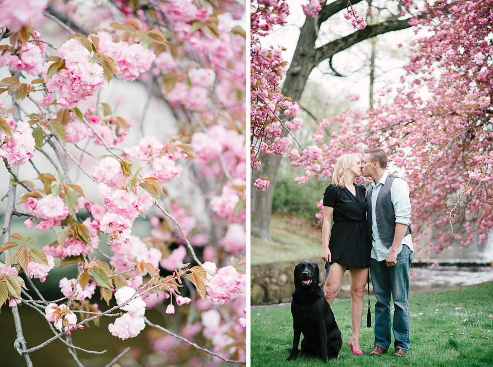 Verona Park Cherry Blossom Love Portrait Photo 8