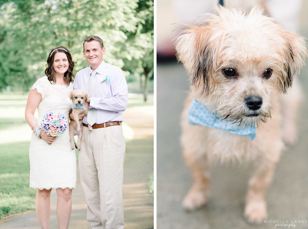 Schenectady Rose Garden Anniversary Dog with Bowtie | Michelle Lange Photography