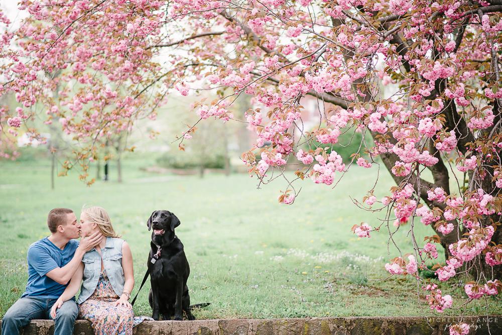 Kat & Brian's Verona Park Anniversary (with Cherry Blossoms!)