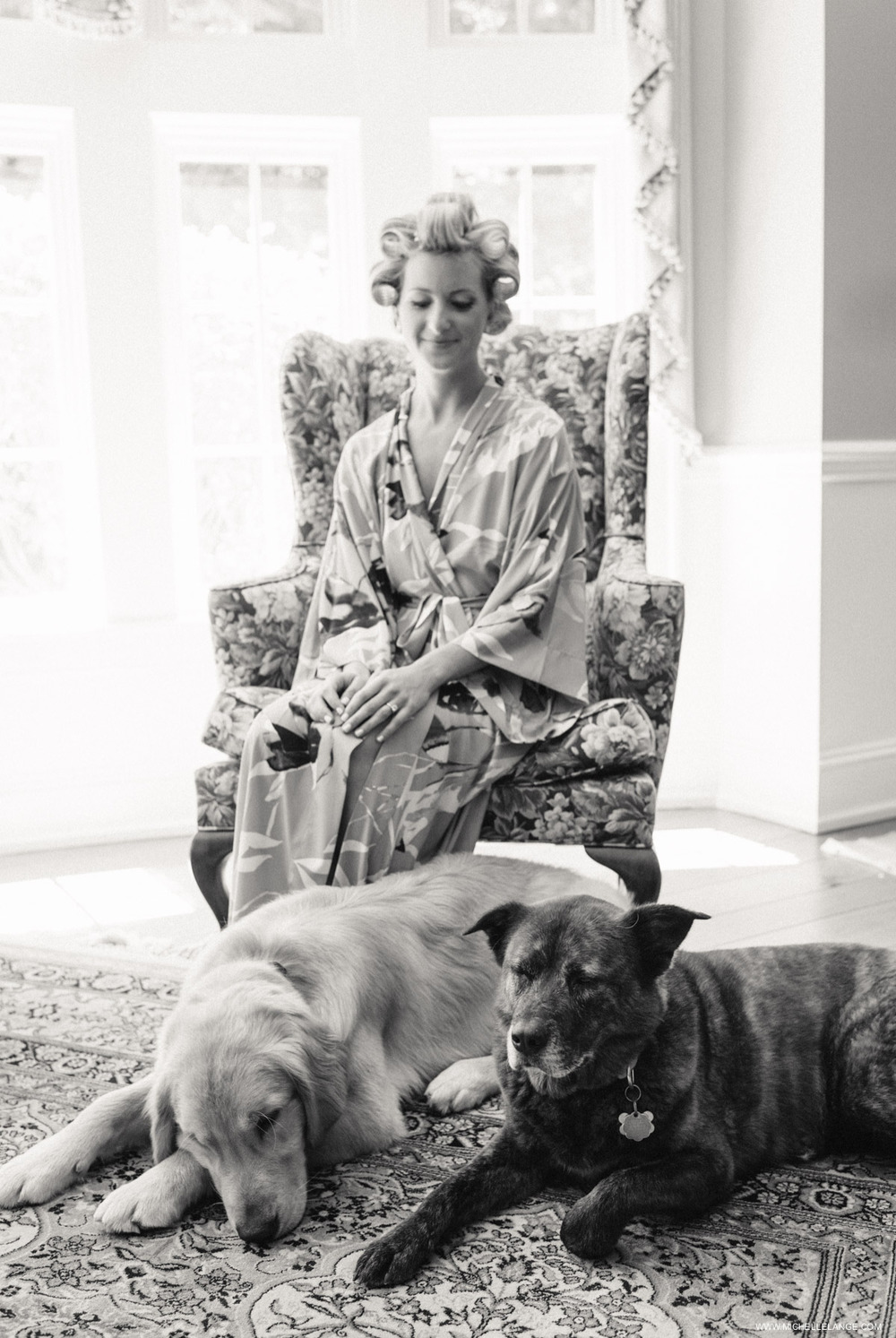 Bride with Dogs on Wedding Day.jpg
