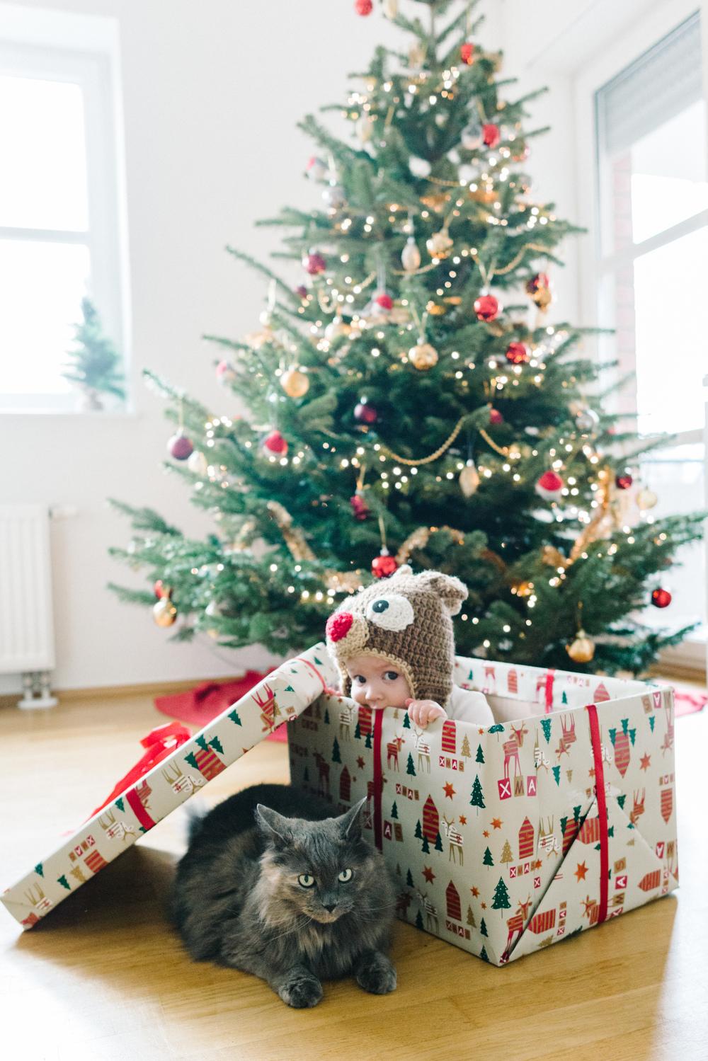 Christmas 2015  (2 of 2).jpg