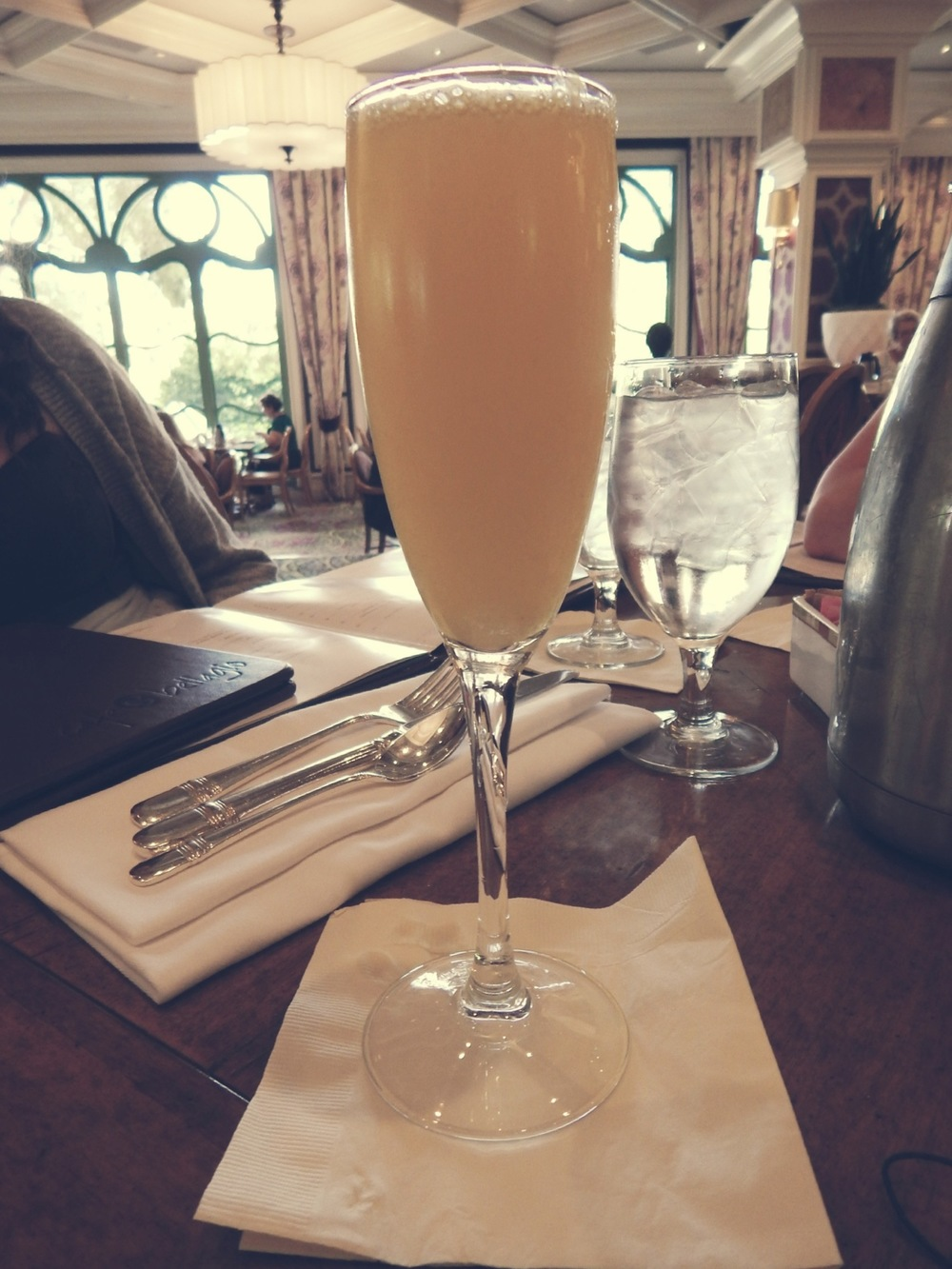 A mimosa at The Bellagio Gardens, Las Vegas.