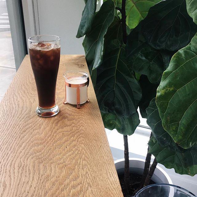 un americano avec de la crème, s'il vous plait 🌱 #coffeeandplants