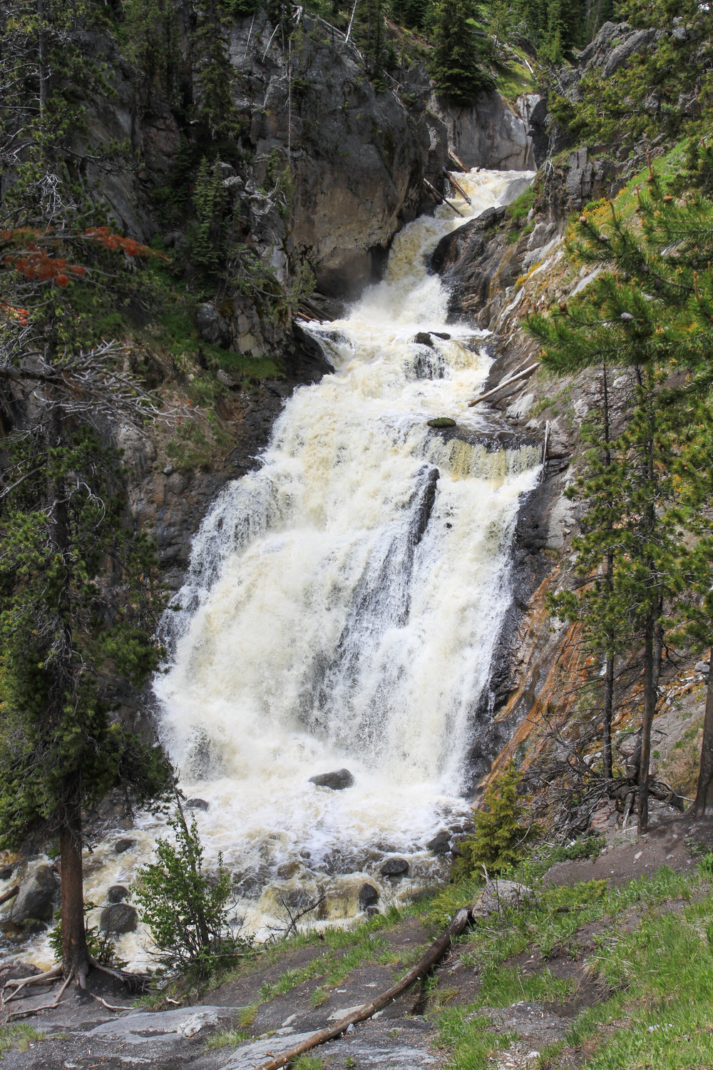 mystic-falls-yellowstone