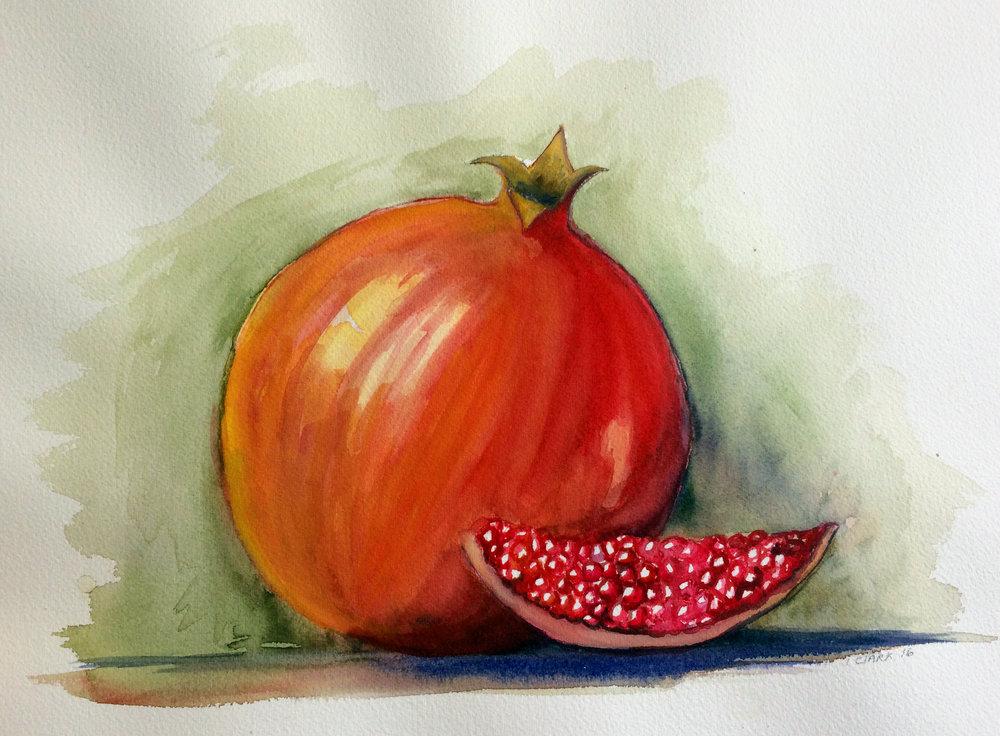 Pomegranate, 2016, Watercolour
