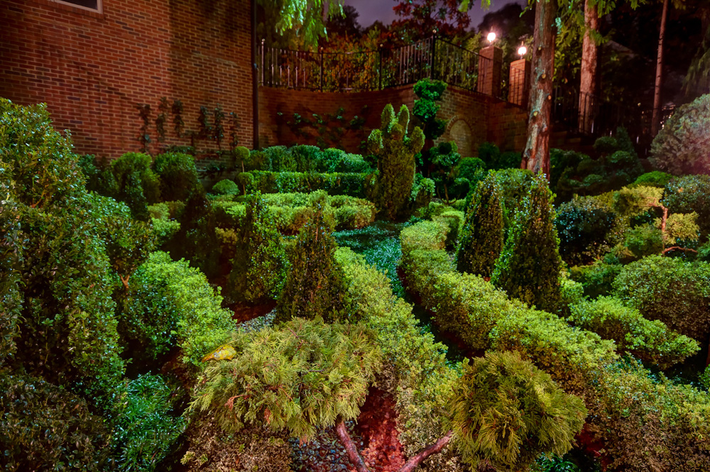 northeast topiary garden night.jpg