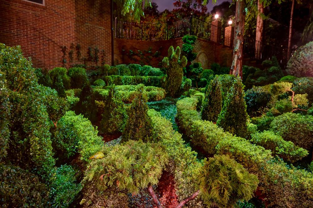 northeast topiary garden night.jpg