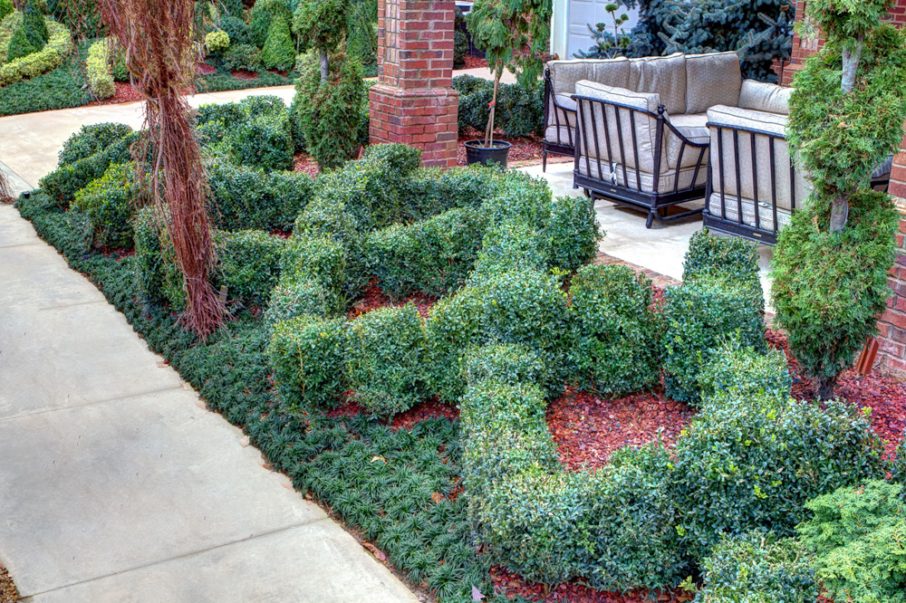 knot garden2.jpg