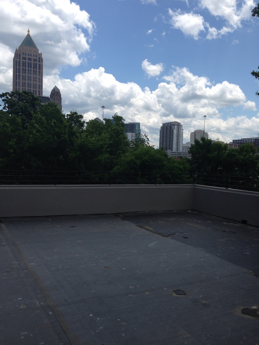 View from the rooftop.jpg