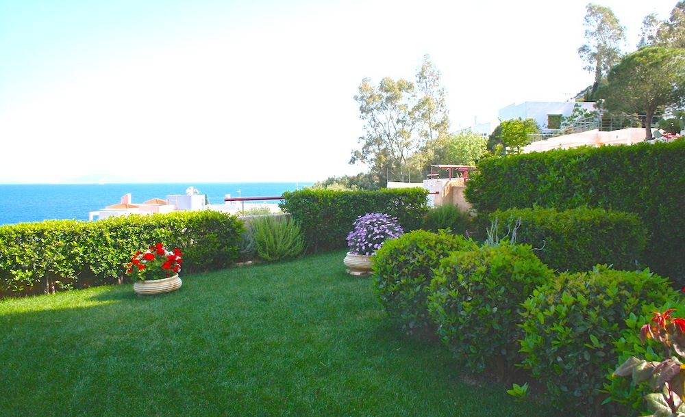 Garden and Lawn.JPG