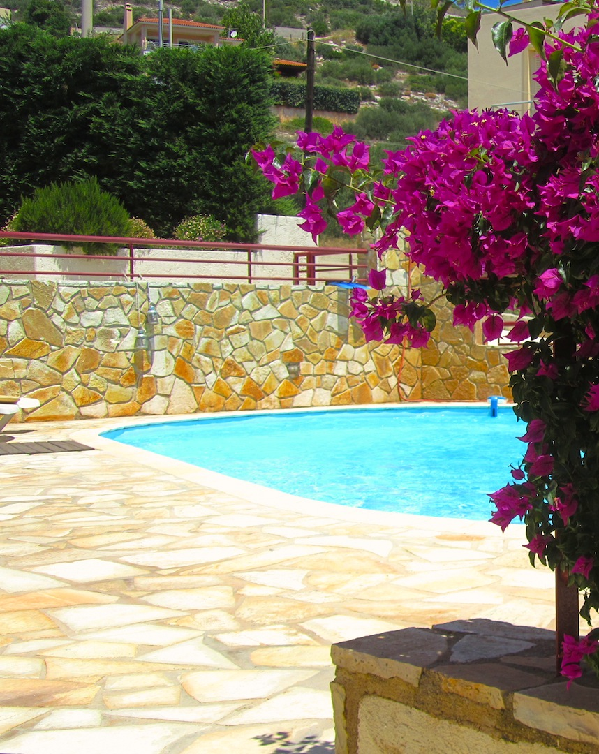 Flowers and Pool.JPG