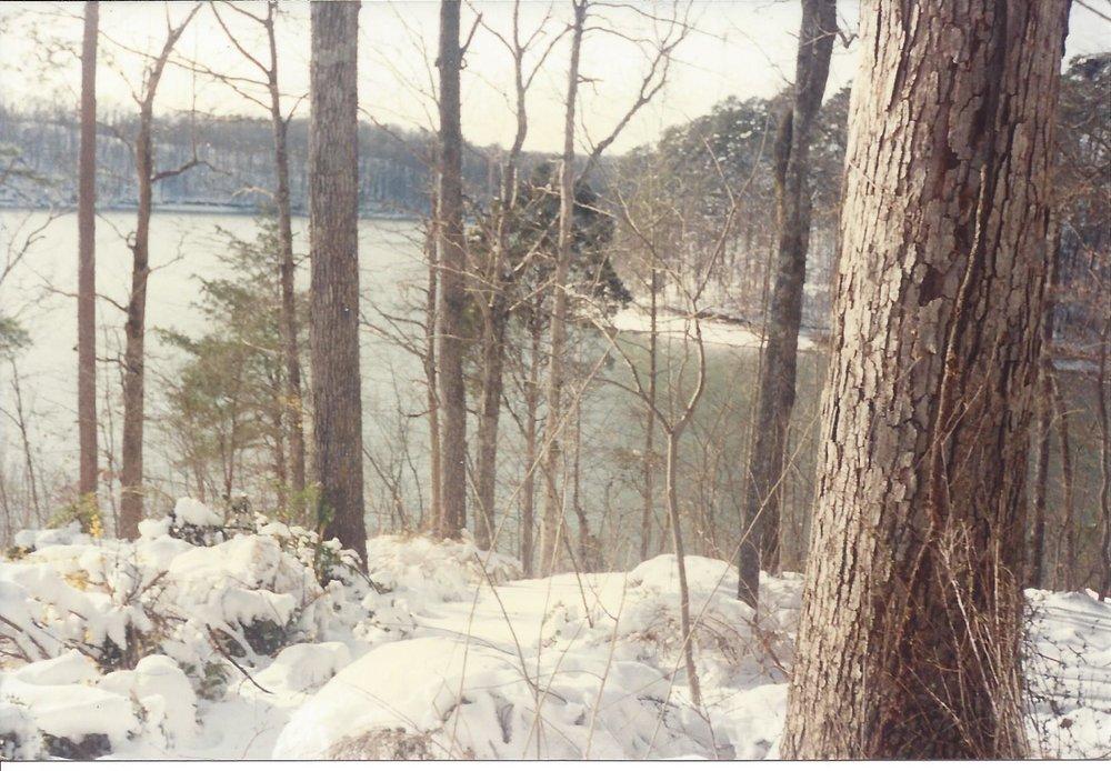 Winter3 1993.jpg