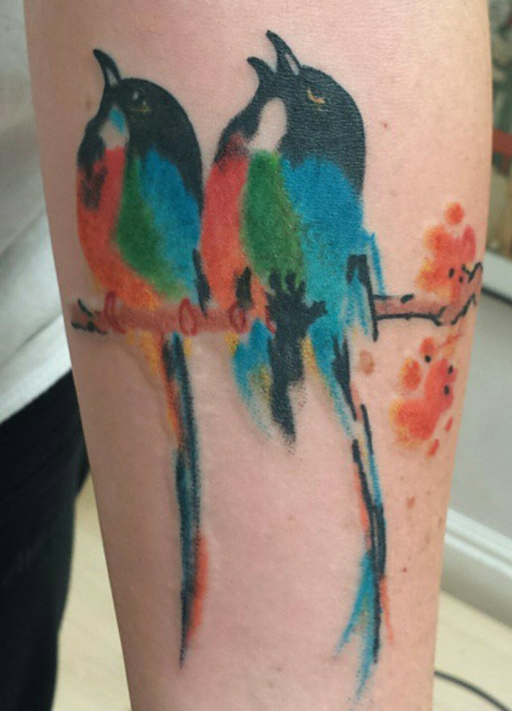 watercolor birds.jpg