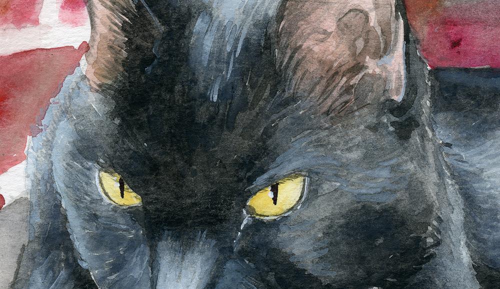 2018-Pet Portrait -Spike.png