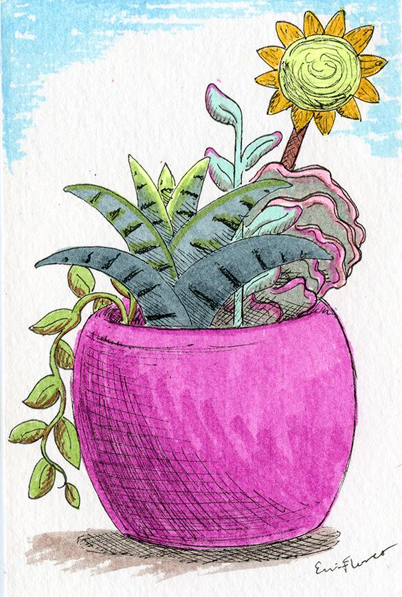 2018 - Succulents.png