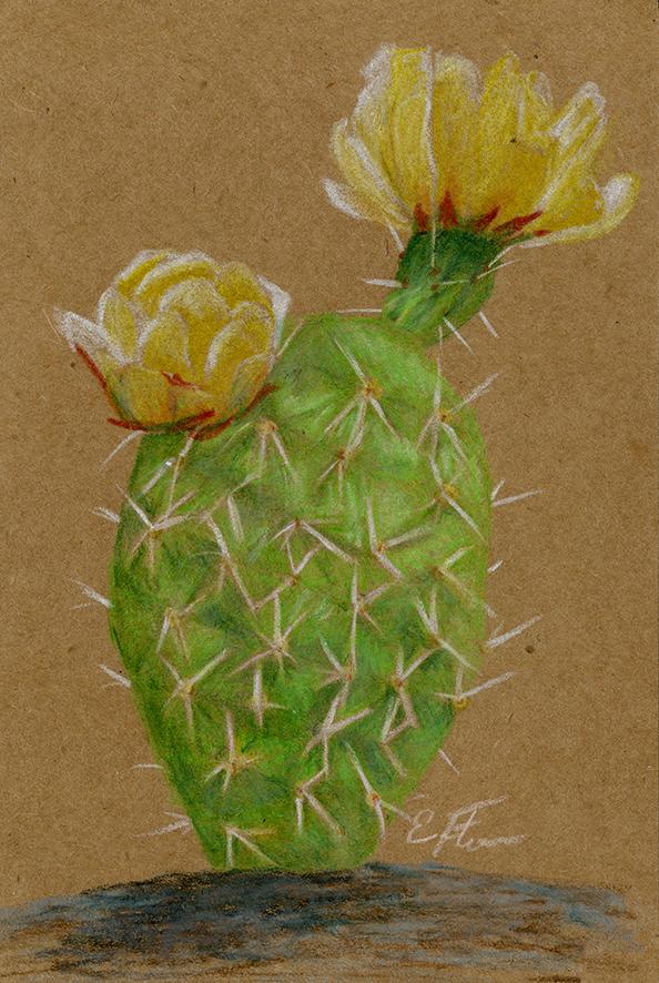 2018- cactus.png