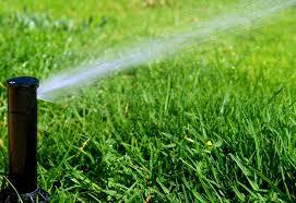 Irrigation?