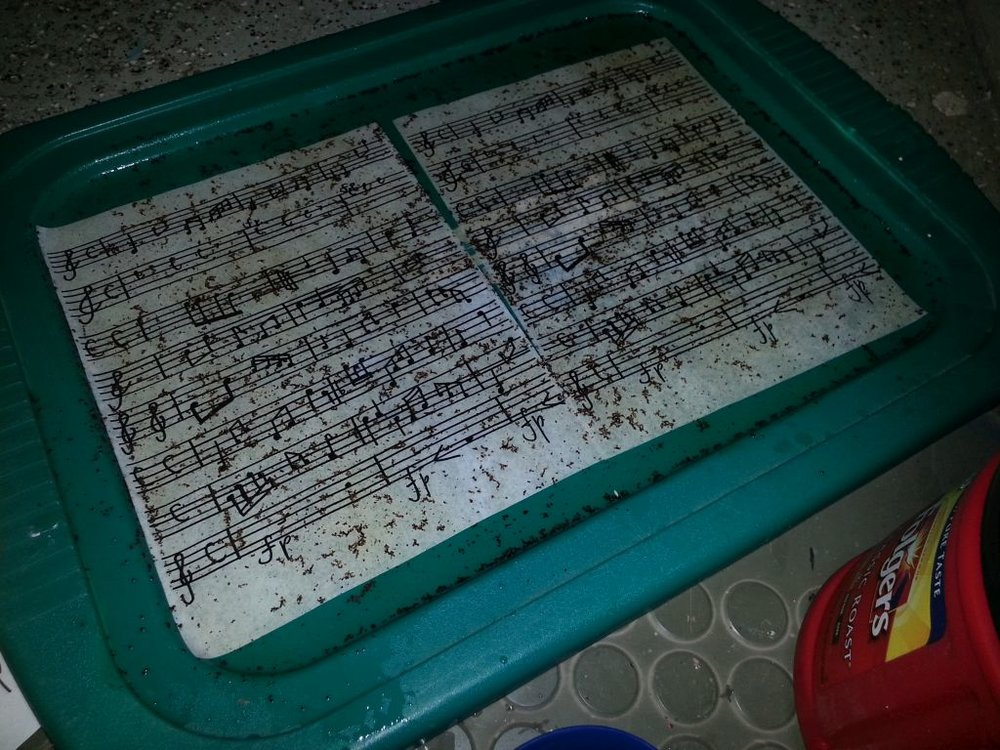 Coram Boy : Sheet Music  Aging the sheet music with coffee.
