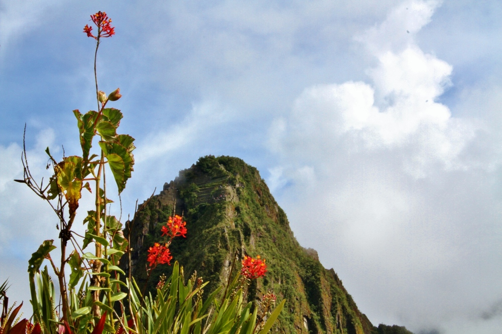 "Huayna Picchu (""Young Mountain"") at the eastern end of the city"