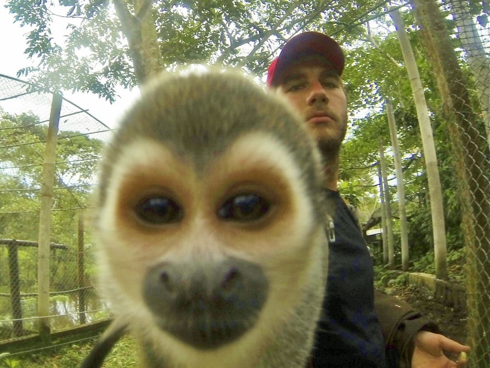 Saimiri (Squirrel monkey a.k.a. Will-take-everything-out-of-your-pockets-and-eat-it monkey)