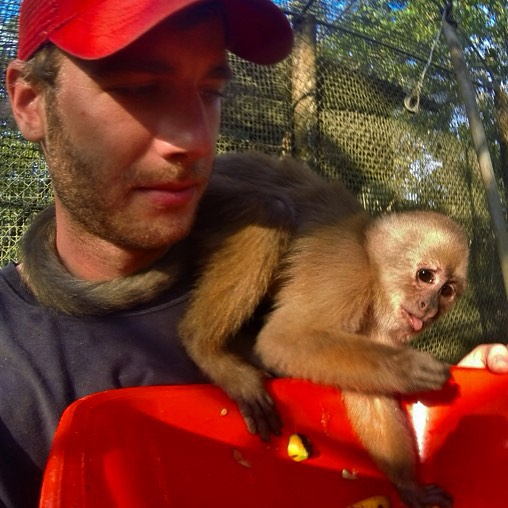 #mcm (that is, #monkey crush Monday): This time last year I was lucky enough to get to volunteer with rescued animals like Ricky the #CapuchinMonkey at Zoorefugio Tarqui in the Ecuadorian Amazon.  Head to the URL in the comments below to find out how you can get involved!