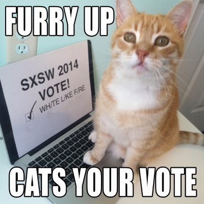 SXSW Cat Meme.jpg