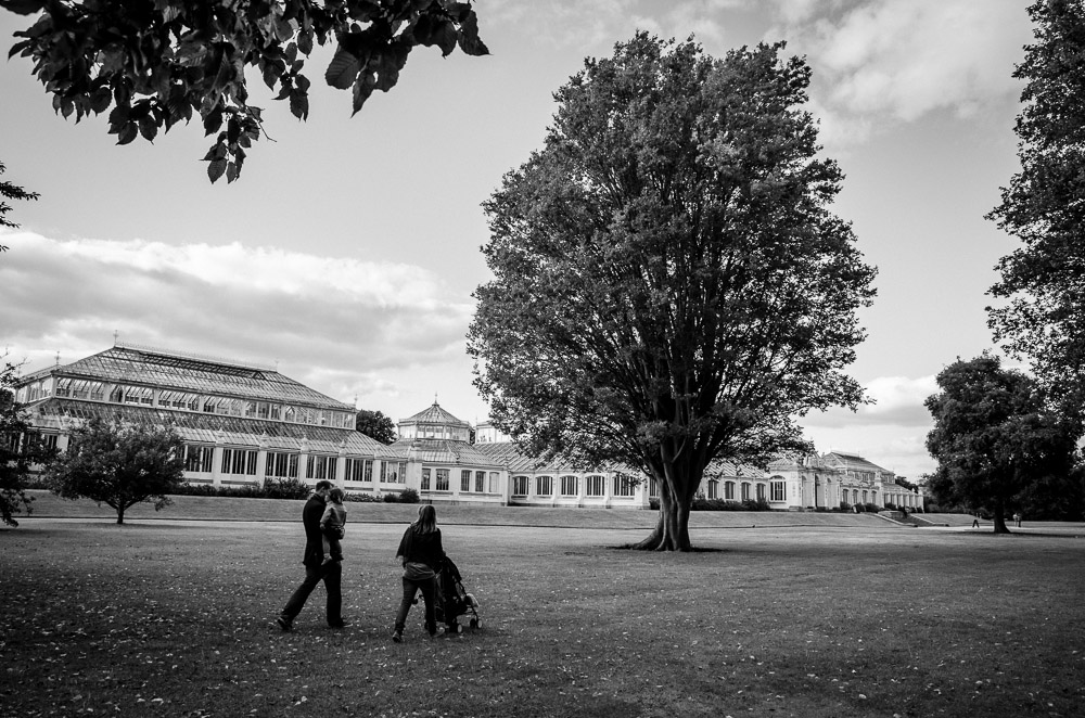 london|Kew gardens|7508|September 29, 2012.jpg