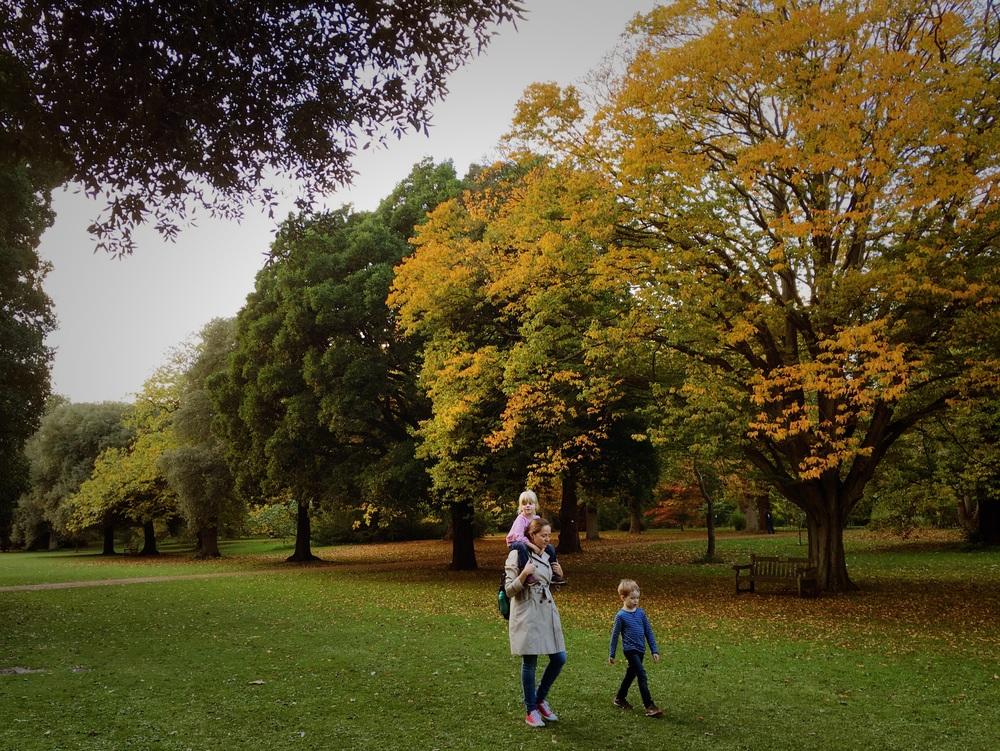 Kew Gardens, October 2015